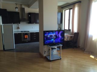 Apartament on Mashtots 33/2 str. - Yerevan vacation rentals