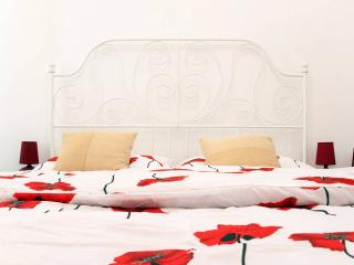 Charming apartment in the historic city - Cluj-Napoca vacation rentals