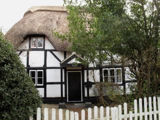 Lovely 3 bedroom Cottage in Lyndhurst - Lyndhurst vacation rentals