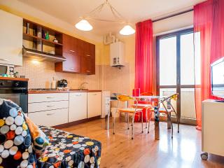 Lovely 2 bedroom apartment with balcony in Pisa, kids welcome! - Marina di Pisa vacation rentals