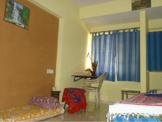 Explore Globe Mumbai, 1room kitchen condo homestay - Mumbai (Bombay) vacation rentals