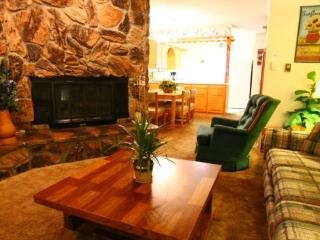 Claim Jumper Townhouse #17 - In Town, Ski In/ Ski Out, On the River, Next to Fishing Ponds, WiFi, King Bed - Red River vacation rentals