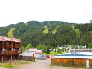 Flagg Mountain Townhouse #6 - In Town, King Bed, Jacuzzi Tub, WiFi, Satellite TV, Washer/Dryer, Pets Considered - Red River vacation rentals