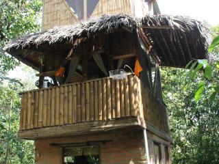 The Bird Tower - Mindo vacation rentals