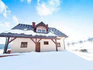 Valley Forest Holiday Home Poland - Stronie Slaskie vacation rentals