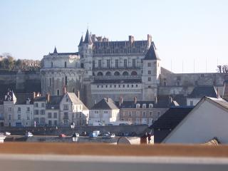 Vues d'exceptions au centre d'Amboise - Amboise vacation rentals