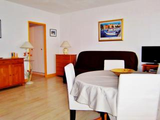 Cozy Ajaccio Studio rental with Internet Access - Ajaccio vacation rentals