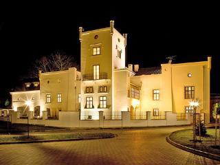 Trnova ~ RA12376 - Central Bohemian Region vacation rentals