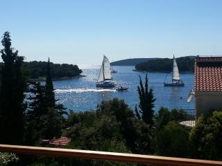 2 bedroom Apartment with Deck in Maslinica - Maslinica vacation rentals
