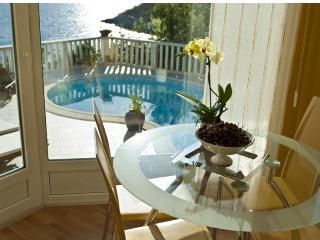 Amazing seaview villa Bird of paradize - Southern Dalmatia vacation rentals