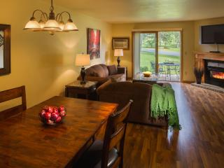 Trade swimsuit for skis! Ski trails, indoor pool - Wisconsin Dells vacation rentals