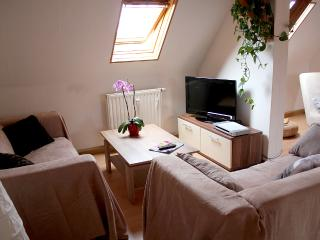 Nice Condo with Internet Access and Television - Bad Windsheim vacation rentals