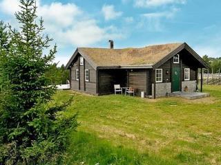 Rondane ~ RA39025 - Eastern Valleys vacation rentals