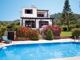Villa in Argaka - Pedoulas vacation rentals
