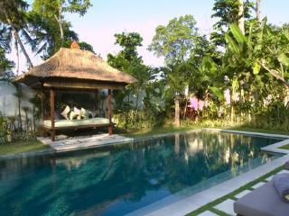 Charming Three Bedroom Villa - Seminyak vacation rentals