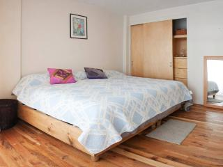 Cozy Apartment Near WTC and Condesa - Mexico City vacation rentals
