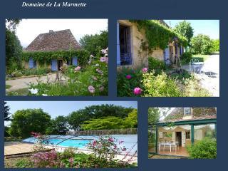 vallée Dordogne,maison classée 4* piscine privée - Bergerac vacation rentals