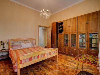 Magnificent center, king size bedroom - Saint Petersburg vacation rentals