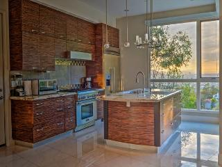 Glass Pool & Spa! Stunning Architecture 3Bed/ 2.5 Bath - Glendale vacation rentals