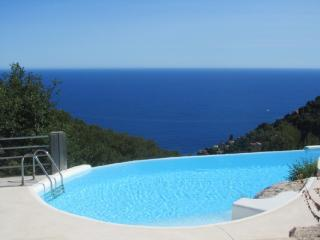 Large villa with pool and sea view - Roquebrune-Cap-Martin vacation rentals