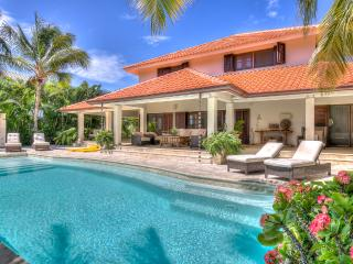 Oceanview luxury masterpiece - Punta Cana vacation rentals