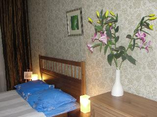 5 bdrm apartment, 10 min. fr. Nevsky ave, Wifi - North-West Russia vacation rentals