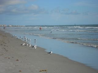 Cocoa Beach Florida Sandcastles - Cocoa Beach vacation rentals