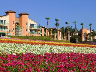 Grand Pacific Palisades Resort - Carlsbad vacation rentals