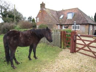 Chamberlains Cottage - Brockenhurst vacation rentals