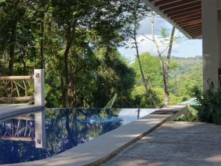 Casa de Paz - Luxury Villa - Playa Matapolo vacation rentals