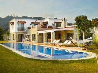 410-Private Pool Lux Villa With Huge Gardens - Ortakent vacation rentals