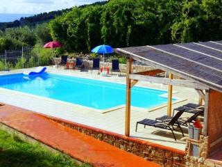Villa Florilena - Capraia e Limite vacation rentals