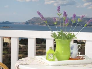 Studio apartment with swimming pool - Cavtat vacation rentals