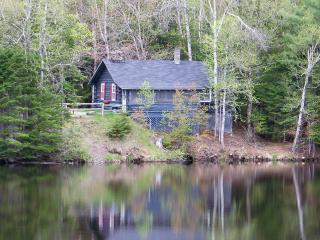 Bright 3 bedroom Cottage in Dennysville with Internet Access - Dennysville vacation rentals