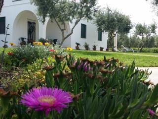 oasi degliulivi 2 camere C - Carovigno vacation rentals