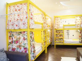 SKVORECHNIK hostel. (Birdhouse hostel) - Moscow vacation rentals
