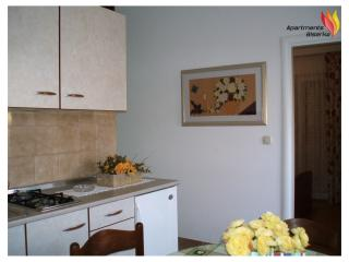 Apartments Biserka Novalja - type 4+1 - Novalja vacation rentals