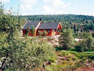 Nissedal ~ RA39200 - Drangedal vacation rentals