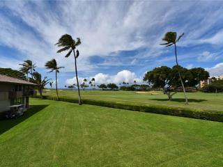 Maui Eldorado: Maui Condo J221 - Ka'anapali vacation rentals