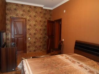 Spacious 4 Room in the heart of  Dushanbe - Tajikistan vacation rentals