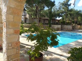 Luxury Villa in Limassol Souni - Souni vacation rentals