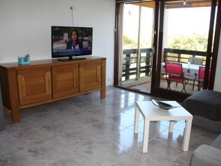 Apt 48 m²+terrasse 12 m²+piscine chauffée+mer - Saint-Aygulf vacation rentals