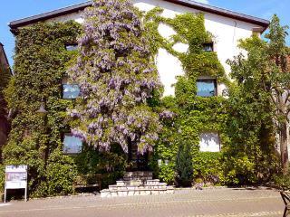 Einliegerwohnung ~ RA13272 - Saarland vacation rentals