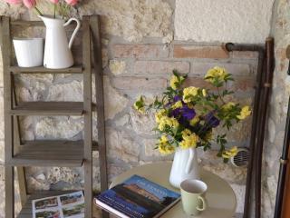 Cottage indipendente Il Bagolaro - Arcugnano vacation rentals
