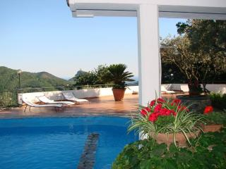 villa signorile+dependance divinacostiera amalfita - Cava De' Tirreni vacation rentals