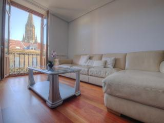 300 m from Concha Beach + PARKING (optiona)+WIFI - San Sebastian - Donostia vacation rentals