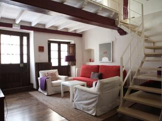 beautiful apt. in historical place (2+ children) - Pasaron de la Vera vacation rentals