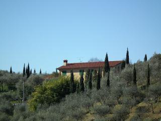 Massarosa: Relax in villa con ampio giardino - Massarosa vacation rentals
