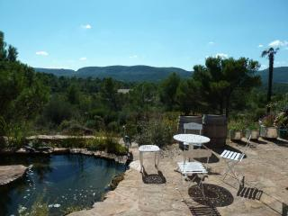 5 bedroom House with Internet Access in Montseret - Montseret vacation rentals