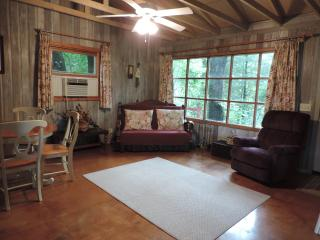 Comfortable Family Cottage In Quiet River Resort - Three Rivers vacation rentals